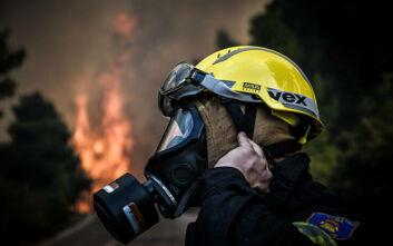 Υπό έλεγχο τέθηκε η φωτιά στη Λακωνία