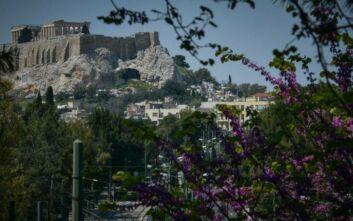 Δήμος Αθηναίων: Ξεκινά ανανεωμένο φέτος το πρόγραμμα «Adopt-A-Tree/Υιοθέτησε νεοφυτεμένα δέντρα»