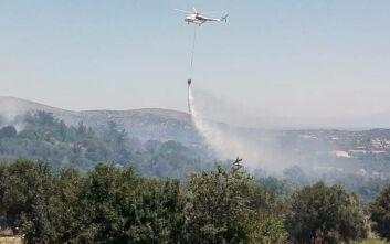 Μεγάλη φωτιά τώρα στην Πούντα Ζέζα στο Λαύριο