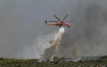 «Η φωτιά στις Κεχριές έφτασε πολύ κοντά σε οικισμό, αλλά δεν έχουν καταγραφεί ζημιές»