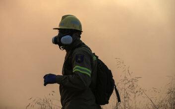 Πενήντα επτά δασικές πυρκαγιές εκδηλώθηκαν το τελευταίο 24ωρο σε όλη την Ελλάδα