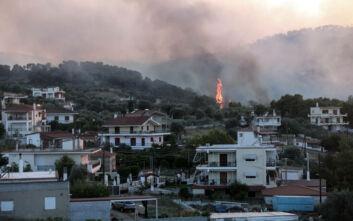 Εκπρόσωπος Πυροσβεστικής: Πάρα πολλές οι διάσπαρτες εστίες στην Κορινθία, σε δύο σημεία τα μεγαλύτερα προβλήματα