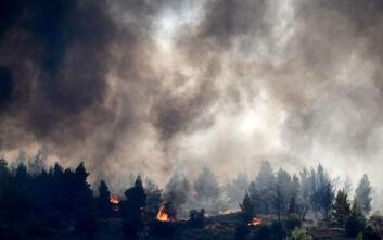 Μεγάλη επιχείρηση της Πυροσβεστικής για Γραμματικό και Κεχριές: Μία σύλληψη για τη φωτιά στην Ηλεία