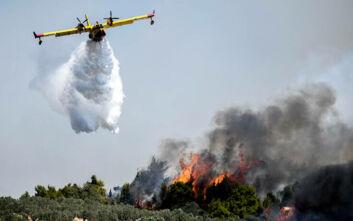 Σε ύφεση η πυρκαγιά στην περιοχή Σαρλάτα Κεφαλονιάς – Απομακρύνθηκαν προσωρινά οι κάτοικοι κοντινών οικισμών