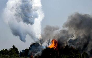 Υπό μερικό έλεγχο η πυρκαγιά στο Λουτράκι Κορινθίας