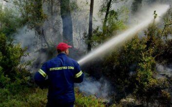 Υπό έλεγχο η φωτιά στο Λαγκαδά