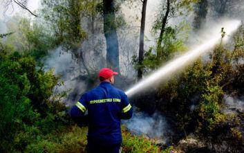 Οριοθετημένες οι φωτιές σε Δυτική Μάνη και Κύθνο