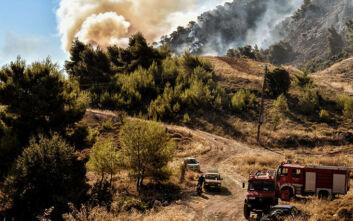 Τρεις μεγάλες φωτιές σε εξέλιξη στην Ελλάδα - Στο Γραμματικό σπεύδει ο Γενικός Γραμματέας Πολιτικής Προστασίας