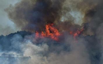 Φωτιά στο Γραμματικό: Σε ετοιμότητα οι κάτοικοι στο Χελιδόνι για εκκένωση - Μεγάλη επιχείρηση της πυροσβεστικής