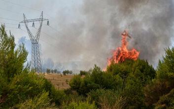 Φωτιά τώρα στη Δυτική Μάνη
