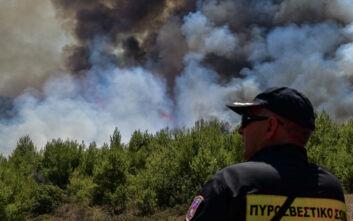 Πολύ υψηλός ο κίνδυνος πυρκαγιάς και για αύριο σύμφωνα με τη ΓΓ Πολιτικής Προστασίας
