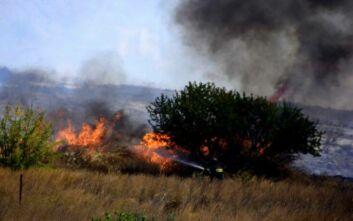 Κρήτη: Υπό μερικό έλεγχο η μεγάλη φωτιά στο Ηράκλειο
