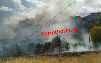 Μαίνεται η φωτιά στις Κεχριές Κορινθίας: Εκκενώθηκαν τρεις οικισμοί και μία κατασκήνωση