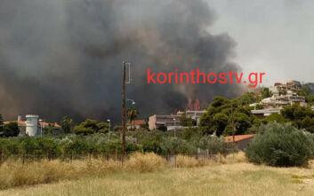 Νέες εικόνες από τη φωτιά στις Κεχριές: Δυνατοί άνεμοι και μαύροι καπνοί κοντά σε σπίτια