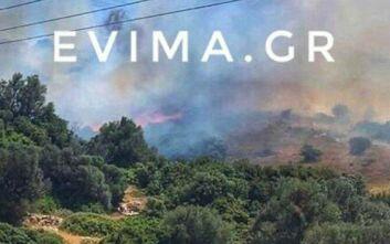 Καμία ανησυχία από την φωτιά στην Κάρυστο σύμφωνα με την Πυροσβεστική