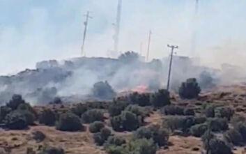 Μεγάλη φωτιά τώρα στη Βάρη: Εκκενώνονται τα παιδικά χωριά SOS