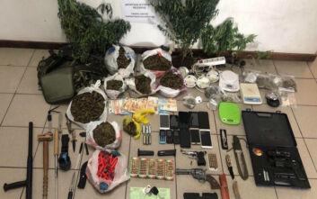 «Ξηλώθηκε» δίκτυο που καλλιεργούσε και διακινούσε ναρκωτικά σε Αθήνα, Κορινθία και Μεσσηνία