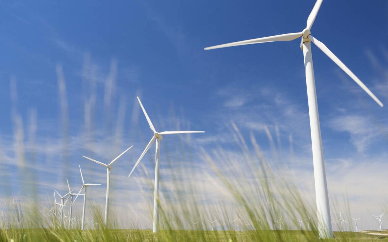 Π. Λαδακάκος: Η αποδοχή των Ανανεώσιμων Πηγών Ενέργειας στην Ελλάδα είναι συντριπτική