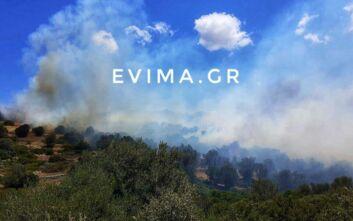 Εύβοια: Φωτιά κοντά στην Κάρυστο