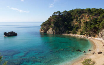 Η κρυφή παραλία της Πρέβεζας με την άγρια ομορφιά και το πλούσιο φυσικό σκηνικό