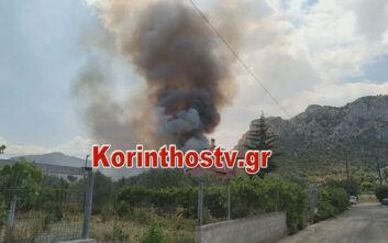 Φωτιά στις Κεχριές: Οι πρώτες εικόνες - Ενισχύθηκαν οι δυνάμεις της Πυροσβεστικής