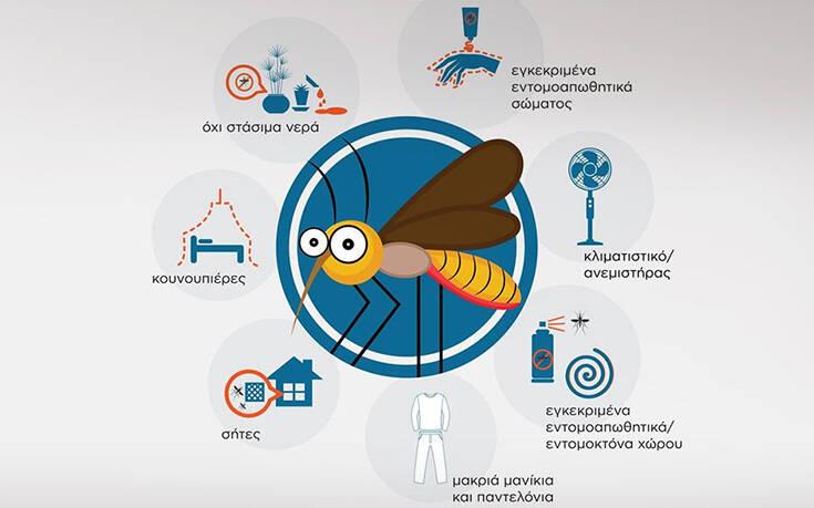Μεγάλη προσοχή με τα κουνούπια: Οδηγίες προφύλαξης από το τον ΕΟΔΥ