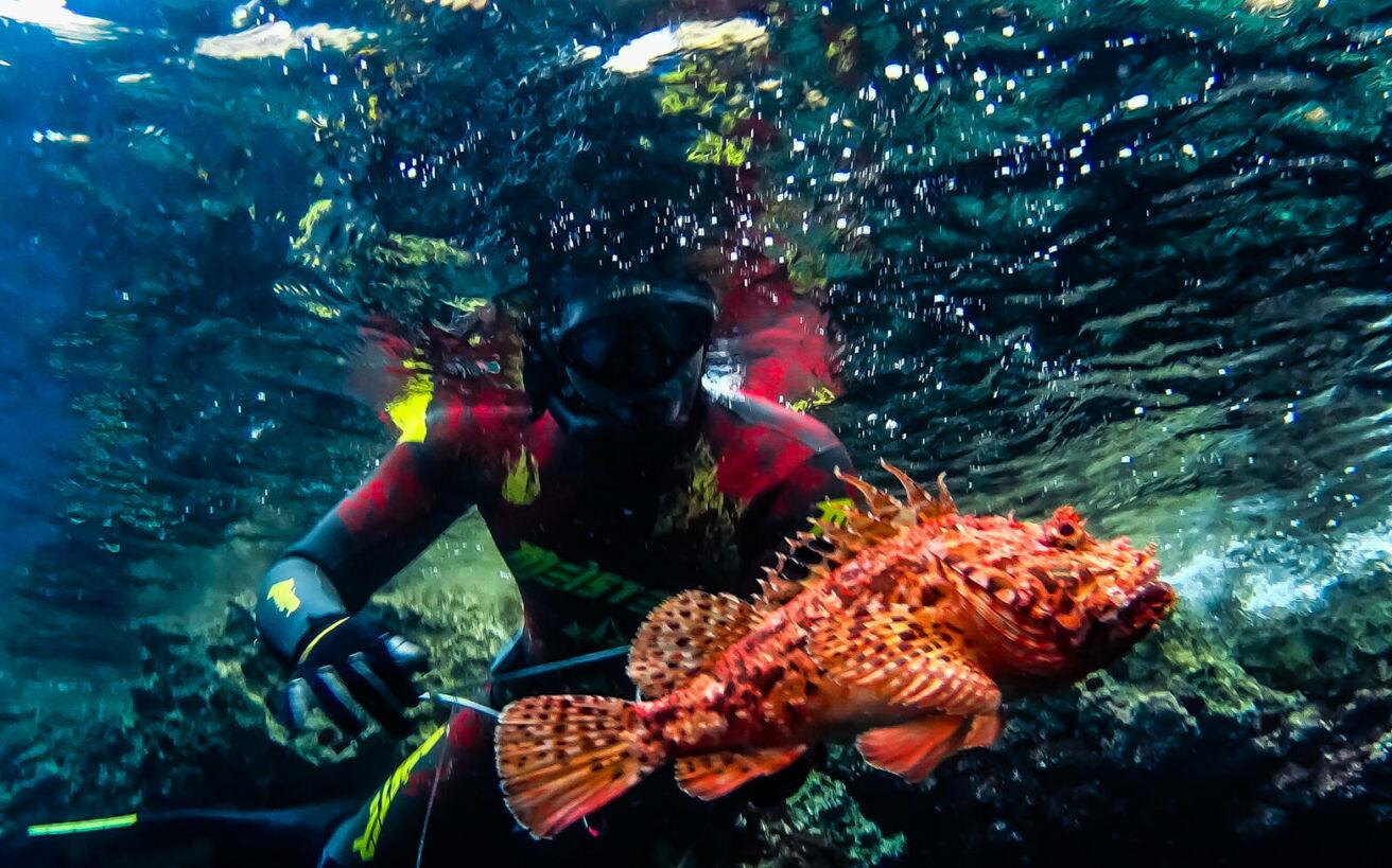 Ο άνθρωπος που έκανε την αγάπη του για το υποβρύχιο ψάρεμα, επάγγελμα πουλώντας ένα ψάρι 100 φορές