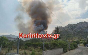 Φωτιά στις Κεχριές: Σπεύδει εκτάκτως ο Νίκος Χαρδαλιάς - Τεράστια επιχείρηση της Πυροσβεστικής