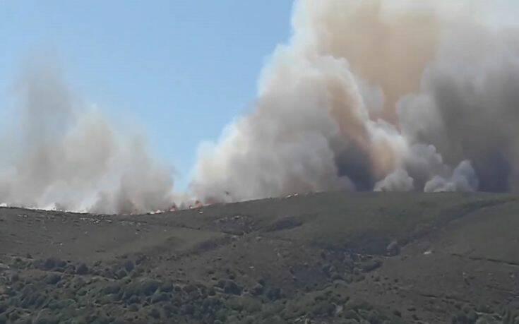 Φωτιά στη Νάξο: Εκκενώνεται προληπτικά ο οικισμός Σκαδό