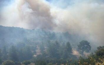 Μεγάλη πυρκαγιά στην Κύπρο - Ισχυρές δυνάμεις της Πυροσβεστικής στο σημείο