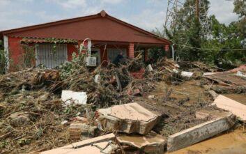 Απίστευτες εικόνες από την ανείπωτη τραγωδία στην Εύβοια