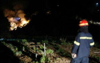 Φωτιά στην Κέρκυρα: Πάνω από 200 στρέμματα δάσους έγιναν στάχτη