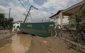 ΔΕΔΔΗΕ: Αποκαταστάθηκε η ηλεκτροδότηση στις κεντρικές γραμμές της κεντρικής Εύβοιας