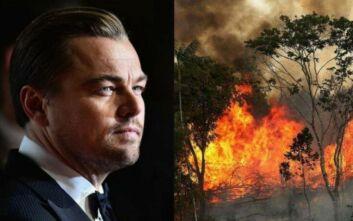 Ο αντιπρόεδρος της Βραζιλίας κάλεσε τον Ντι Κάπριο να επισκεφθεί τον Αμαζόνιο