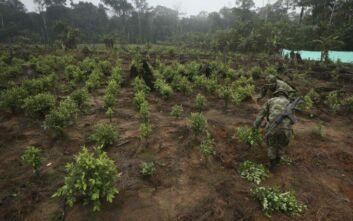 Κολομβία: Η Πολεμική Αεροπορία βομβάρδισε συμμορία διακίνησης ναρκωτικών