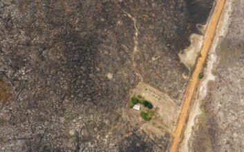 Αυξήθηκαν οι πυρκαγιές στην Αμαζονία – Φόβοι για το μεγαλύτερο τροπικό δάσος του κόσμου