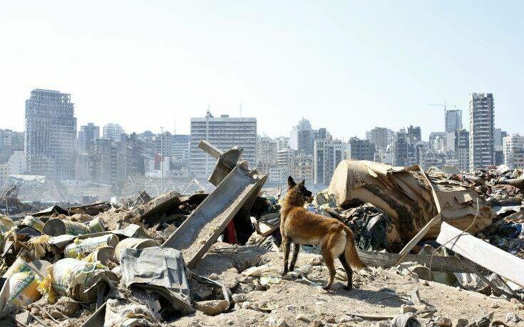 Συγκέντρωση ανθρωπιστικού υλικού για τη Βηρυτό στο Δημαρχείο Καλαμαριάς