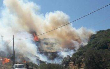Φωτιά στην Κρήτη: Στη μάχη και εναέρια μέσα – Ζημιές σε σπίτι
