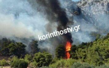 Φωτιά τώρα σε δάσος νοτιοανατολικά του χωριού Αθίκια στην Κορινθία