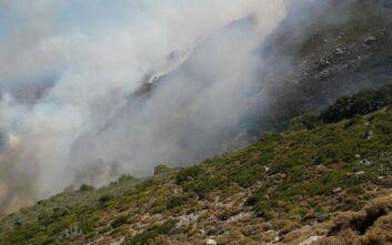 Σε ύφεση η φωτιά στον Δήμο Κανδάνου – Σελίνου στην Κρήτη