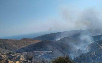 Φωτιά στα Χανιά: Μεγάλη δύναμη της πυροσβεστικής στο σημείο – Άνεμος και δύσβατη περιοχή δυσχεραίνουν την κατάσβεση