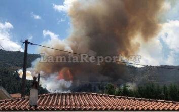 Μεγάλη φωτιά τώρα στην Αταλάντη - Καίει σε δάσος κοντά σε σπίτια