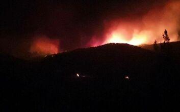 Μεγάλη φωτιά τώρα στον Έβρο