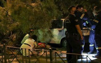 Δέντρο καταπλάκωσε περαστικό στο Χαλάνδρι - Σοβαρά χτυπημένος στο κεφάλι ο άνδρας