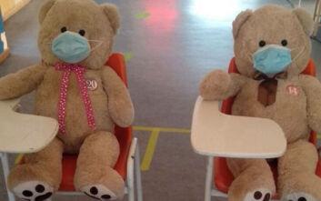 Δίδυμα αρκουδάκια φόρεσαν μάσκα για να ευαισθητοποιήσουν τους μαθητές