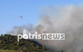 Απειλούνται σπίτια από τη φωτιά στην Ηλεία - Ζητήθηκε εκκένωση