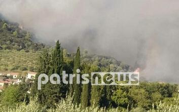Καμία φθορά στον αρχαιολογικό χώρο της Δάφνης από τη φωτιά στην Ηλεία