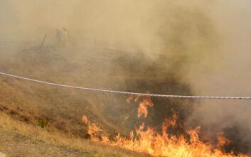 Φωτιά στη Νέα Μάκρη: Ενισχύονται οι δυνάμεις - Έκλεισαν οι δρόμοι