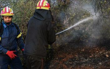 Φωτιά τώρα στην Κρήτη - Δυσκολεύουν την κατάσταση οι δυνατοί άνεμοι