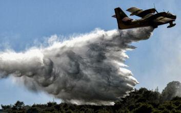 Μεγάλη φωτιά στην Κερατέα: Εκκενώνεται προληπτικά ο οικισμός Φέριζα